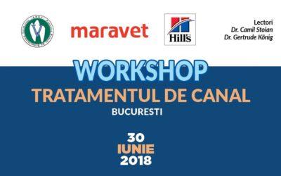 Workshop III de Stomatologie Veterinară