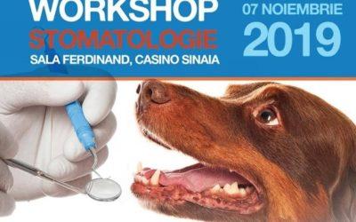 Workshop Stomatologie